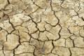 África do Sul declara estado de desastre nacional devido à seca