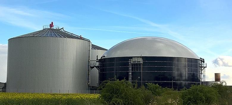 biogas-sustentavel-suinocultura